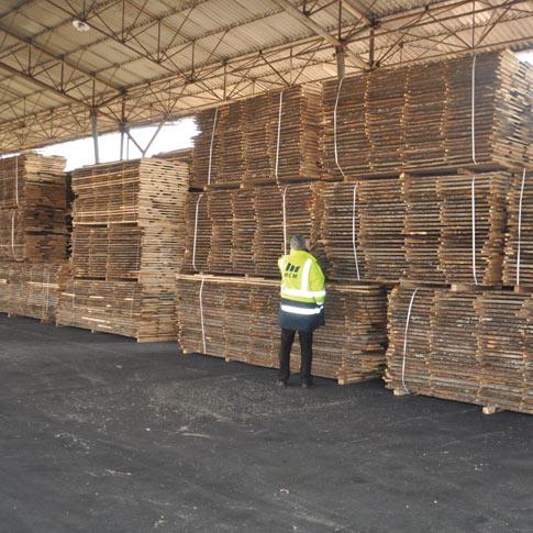 oak-stock2